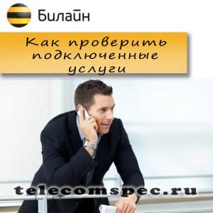 Как можно узнать какие услуги Билайн подключены у тебя