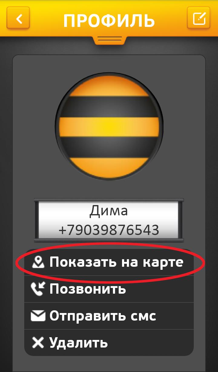 """Как воспользоваться услугой """"Локатор"""" от Билайн"""