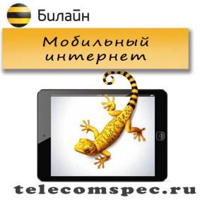 Мобильный интернет от Билайн: как подключить, пакеты и стоимость