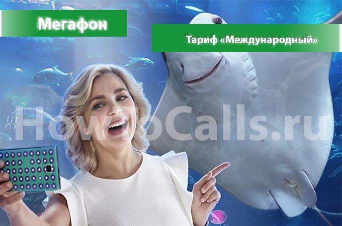 Тариф «Международный» от Мегафон - описание, как подключить и как отключить тариф Международный от Мегафона